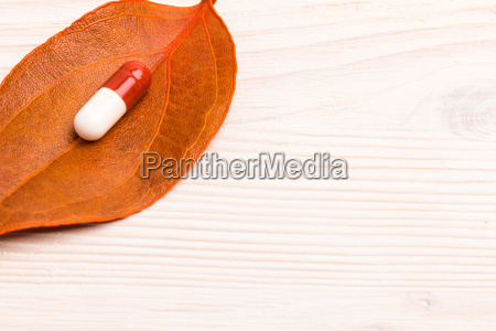brown white medical pill on single