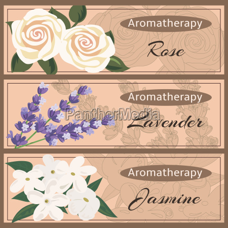 aromatherapy set collection