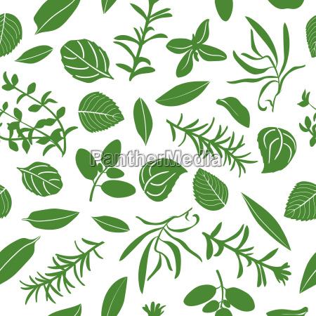 herbes de provence seamless pattern vector