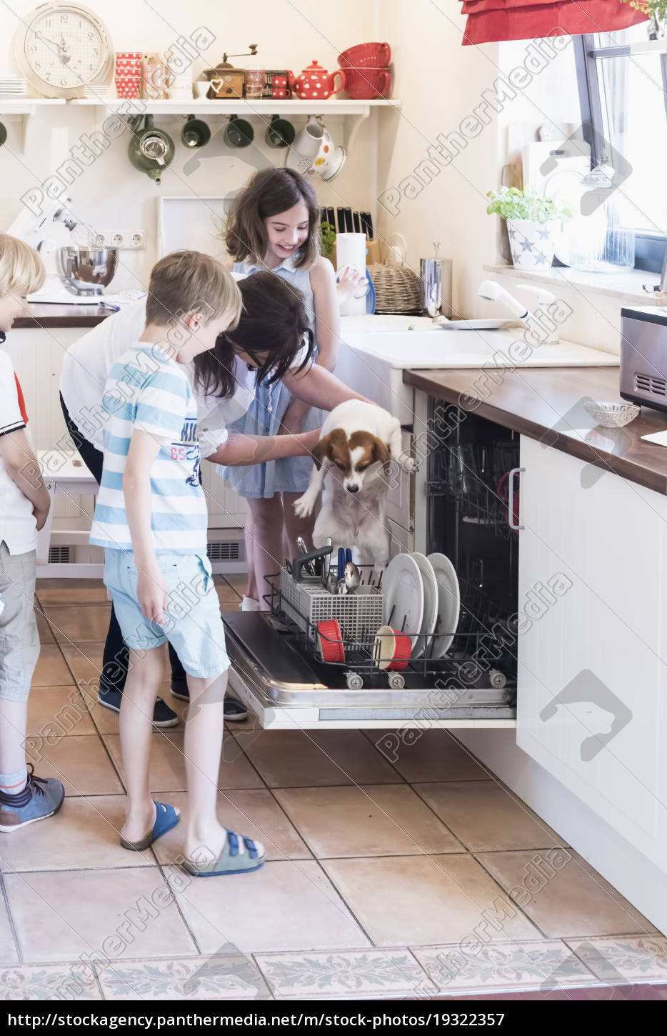 family, and, dog, in, kitchen, at - 19322357