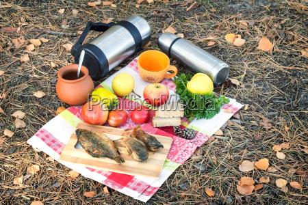 forest autumn picnics holidays food coffee