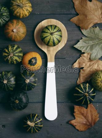 ornamental pumpkins wooden spoon and autumn