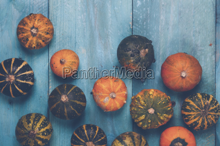ornamental pumpkins on blue wood