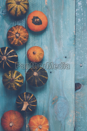 ornamental pumpkins on blue wood