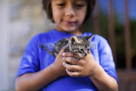 hands of little boy holding tabby