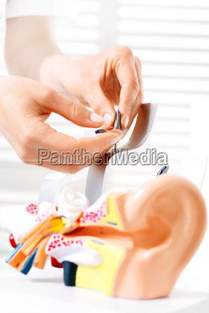 construction of the ear hearing prosthetics