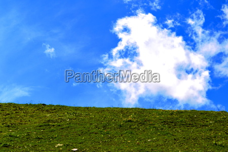 meadow with sky
