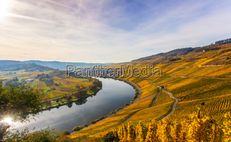 autumn colorful moselle landscape and