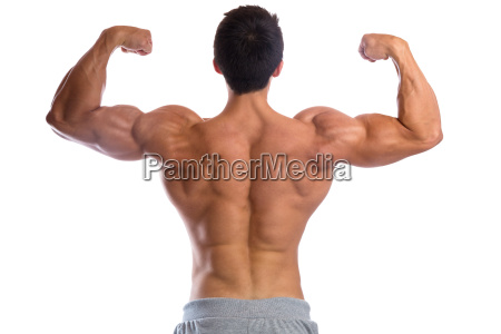bodybuilder bodybuilding muscles body building back