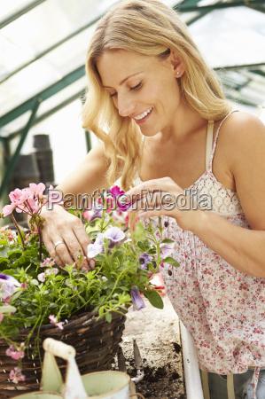 woman growing plants in greenhouse
