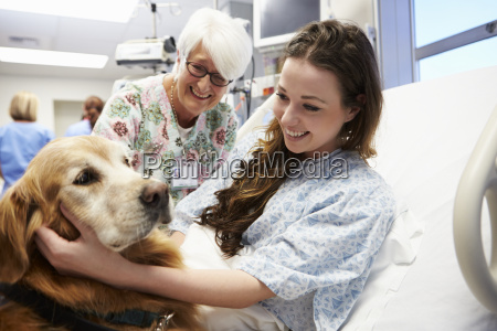 therapy dog visiting young female patient