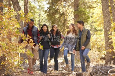 five friends enjoying a hike in