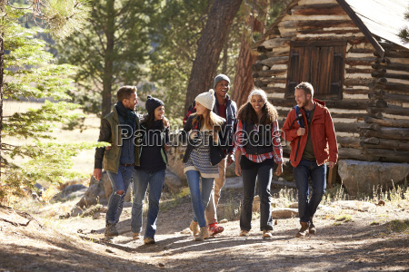 six friends walking on forest path