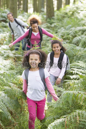 family, group, hiking, in, woods, together - 19408918