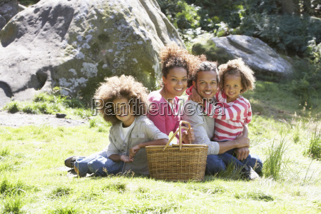 family, having, picnic, in, countryside - 19408808