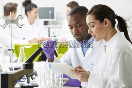 group, of, technicians, working, in, laboratory - 19408074