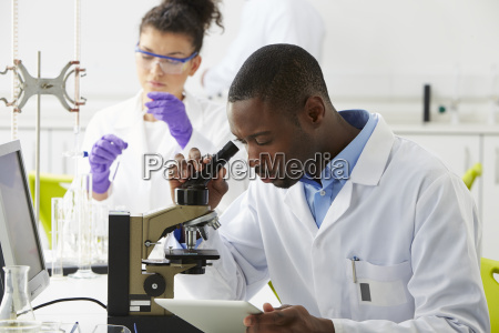 technicians, carrying, out, research, in, laboratory - 19408008