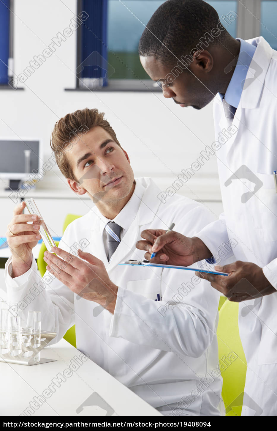 two, technicians, working, in, laboratory - 19408094
