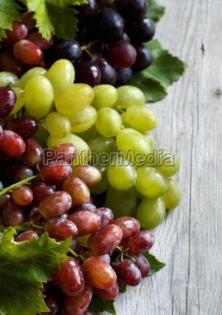 three, types, of, grapes, on, a - 19410852