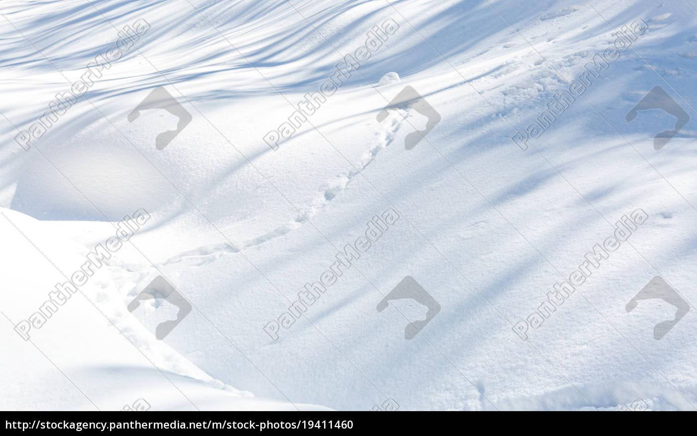Snow Texture Royalty Free Photo 19411460 Panthermedia Stock Agency