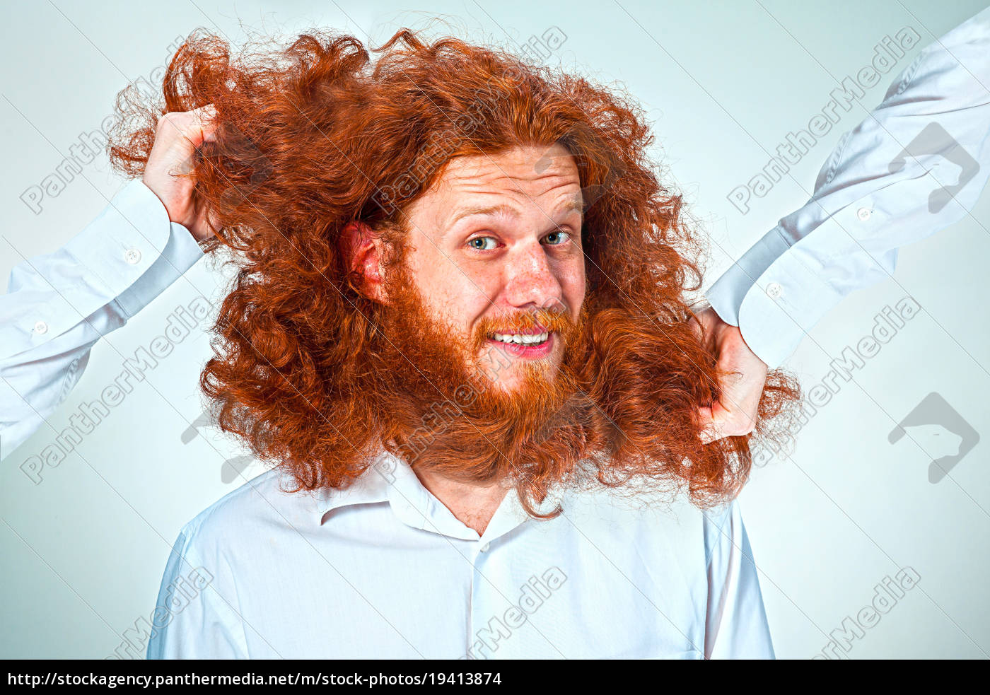 the, angry, man, tearing, his, hair - 19413874