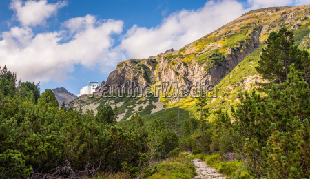 mountain landscape on sunny day