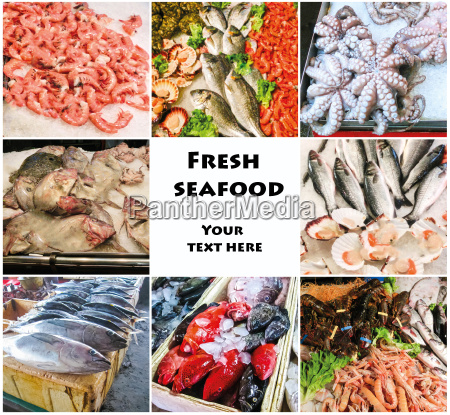 sea food collage with raw fish
