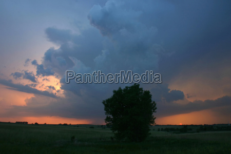 a low precipitation supercell peeks out