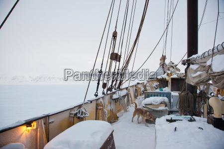 on deck of the noorderlicht a