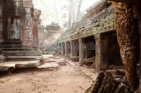 ta prohm temple at angkor siem