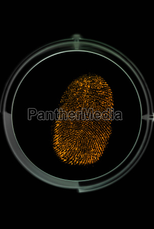 finger print being identified as a