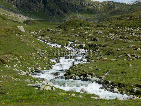 stream rushing over rocks in meadow
