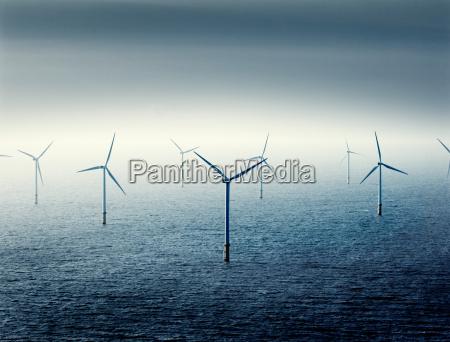 wind farm at sea