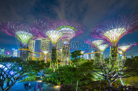 gardens by the bay illuminated at