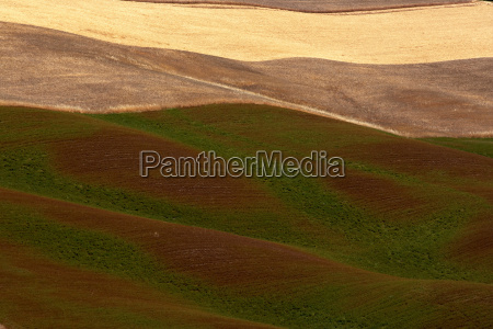 orcia valley in summer