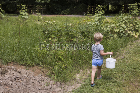 rear view of boy carrying bucket
