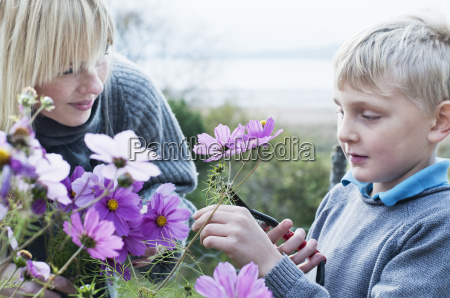 mother and son cutting flowers in