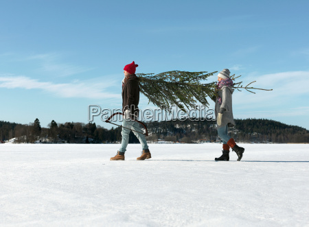 couple, with, christmas, tree - 19544968