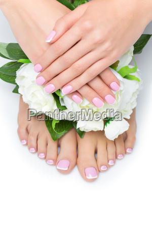 woman hands and feet with french