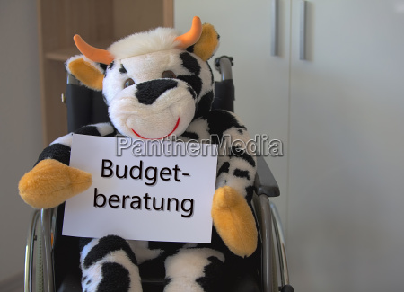 plush toy cow sits in wheelchair