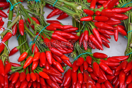 red hot chili peppers bunches close