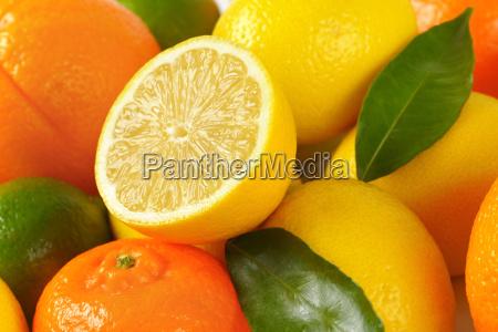 fresh citrus fruit