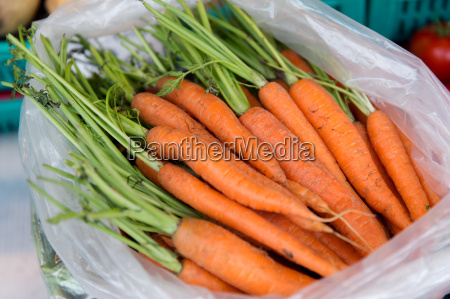 close up of carrot in plastic