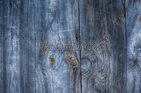 gray old wooden background with knots