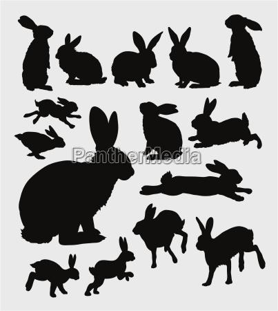 rabbit action silhouette