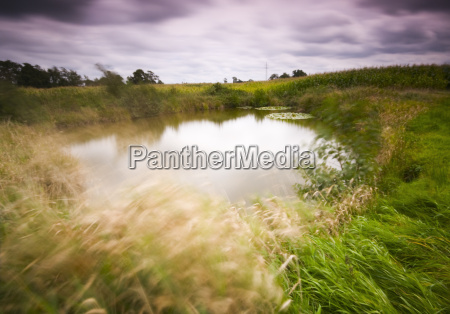 motion on a pond