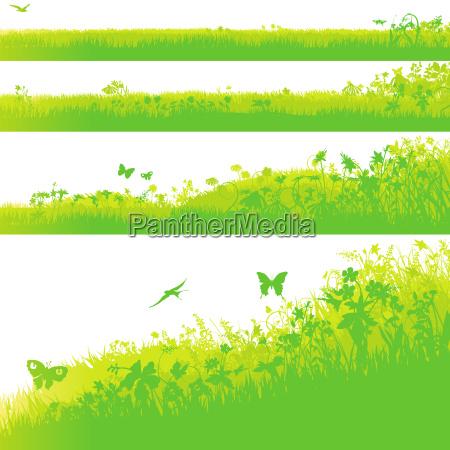 four grassy areas in the garden
