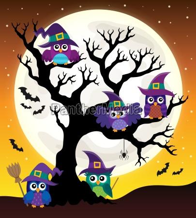 owl witches theme image 4