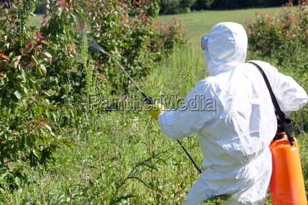 farmer spraying toxic pesticides or insecticides