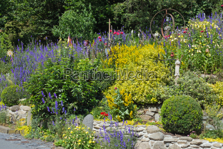 steingarten with different plants and flowers